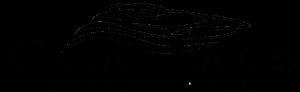 greatlakesboatsandbrokerage.com logo